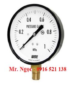 Đồng hồ áp suất Wise Model P110